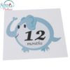 Sibia Palace Baby 1-12 Months Milestone Photo Prop Photoshoot Stickers Animals Jungle 12 month