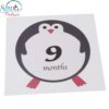 Sibia Palace Baby 1-12 Months Milestone Photo Prop Photoshoot Stickers Jungle