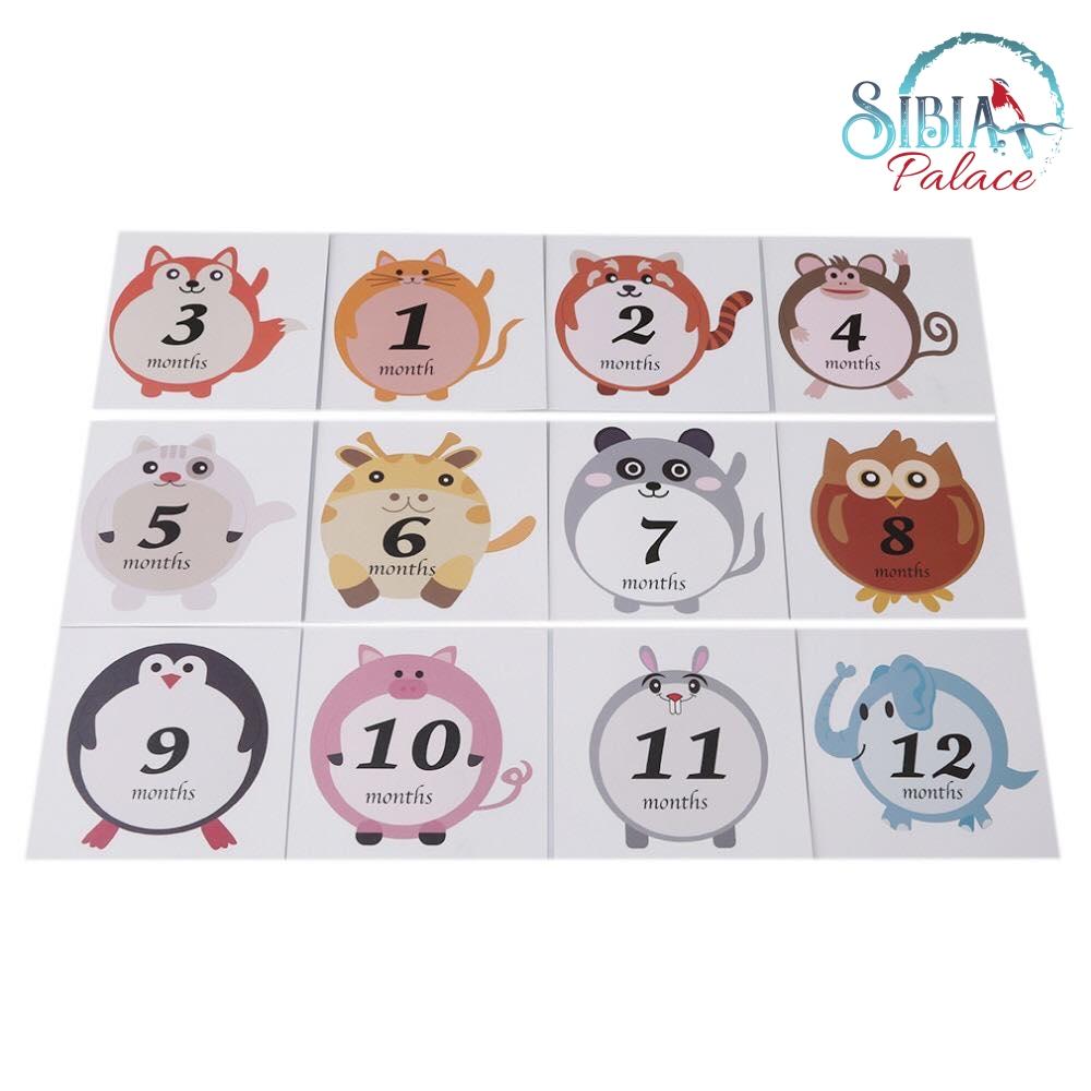 Cute Animal Baby 1-12 Monthly Milestone Sticker Baby Shower Photo Props